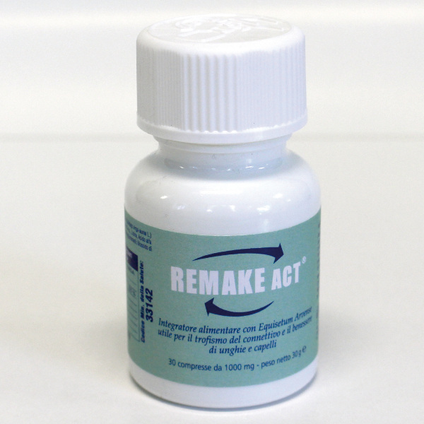 REMAKE-ACT